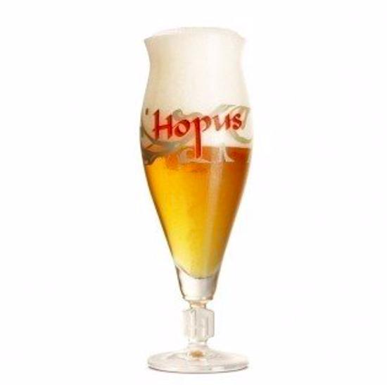 Afbeeldingen van 1x33cl Glas Hopus + 1 Gistglas