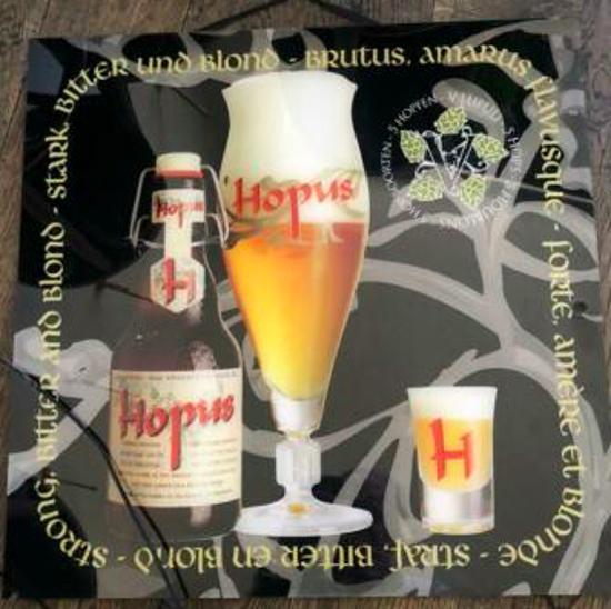 Picture of Hopus lichtreclame 50cmx50cm
