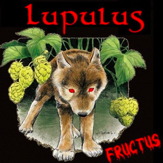 Picture of Lupulus Fructus 4,2% 1x33cl